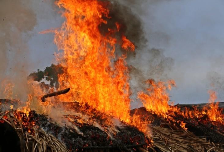 6 vezes mais incêndios são registrados em agosto de 2019, comparado a agosto de 2018