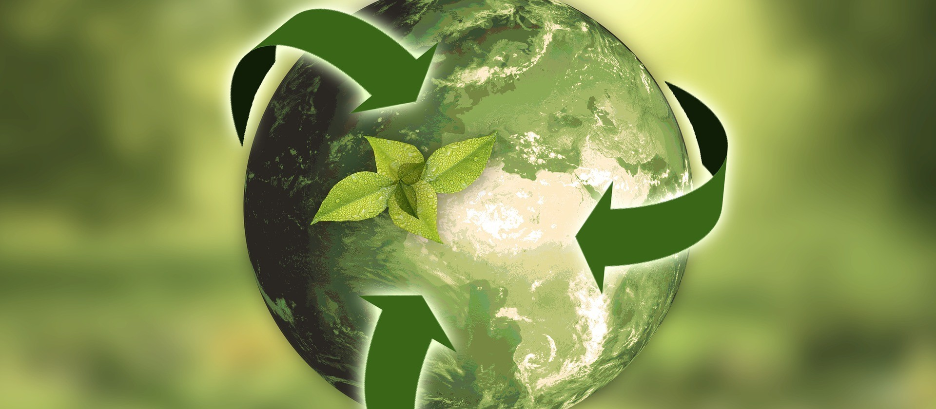 Dia do reciclador e da reciclagem do lixo