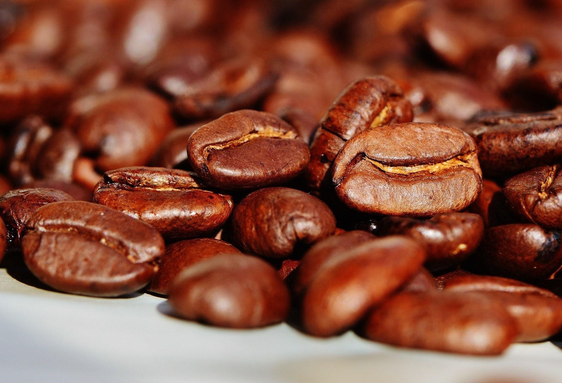 Segue de forma lenta colheita do café