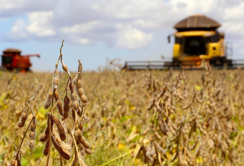 Paraná vai decretar estado de emergência climática